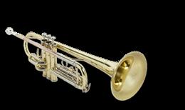 Pro Audio & Instruments