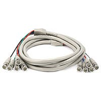 Product Image for 5BNC RGB to 5BNC RGB Video Cable - 10ft