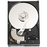 "Product image for WD Caviar WD800JD 80 GB 3.5"" Hard Drive - SATA - 7200rpm - 8 MB..."