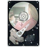 "Seagate - 7200.3 ST3160215SCE 160 GB 3.5"" Internal Hard Drive - SATA - 7200rpm - 2 MB Buffer - Hot Swappable"