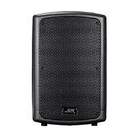 Stage Right by Monoprice 1000-watt, 12in Passive PA Speaker