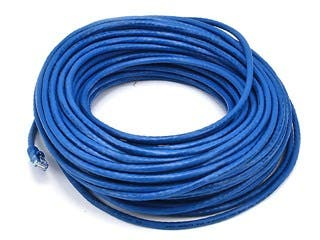 Product Image for Cat6 24AWG UTP Ethernet Network Patch Cable, 100ft Blue