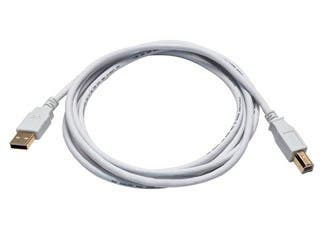 Product Image for 6ft USB 2.0 A Male to B Male 28/24AWG Cable - (Gold Plated) - WHITE
